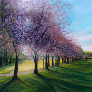Spring blossom in The Meadows