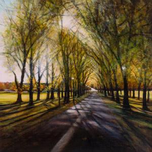 Glistening patterns on Middle Meadow Walk