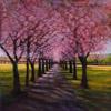 Spring blossom haze